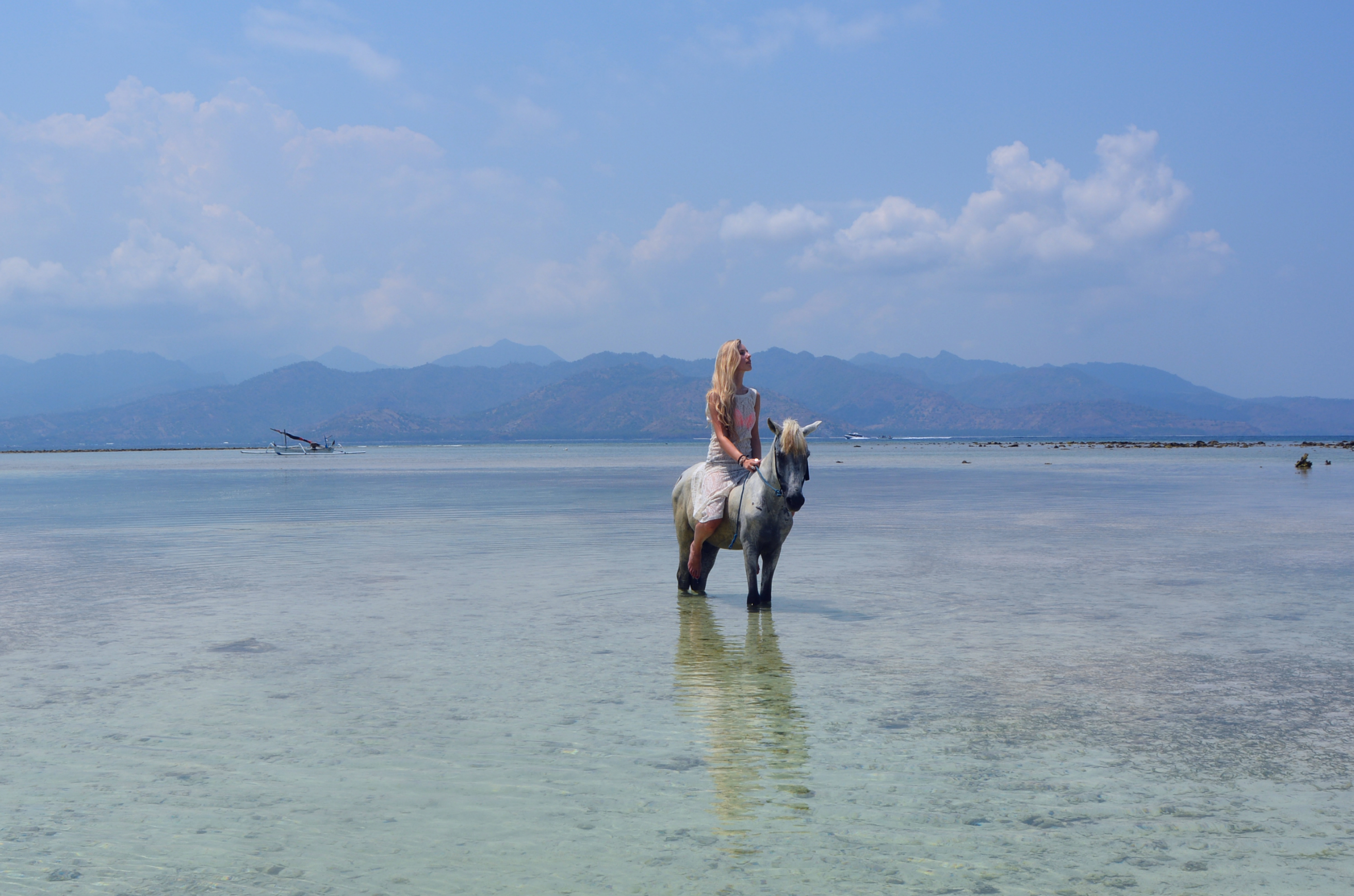 Gili trawangan beach horse riding