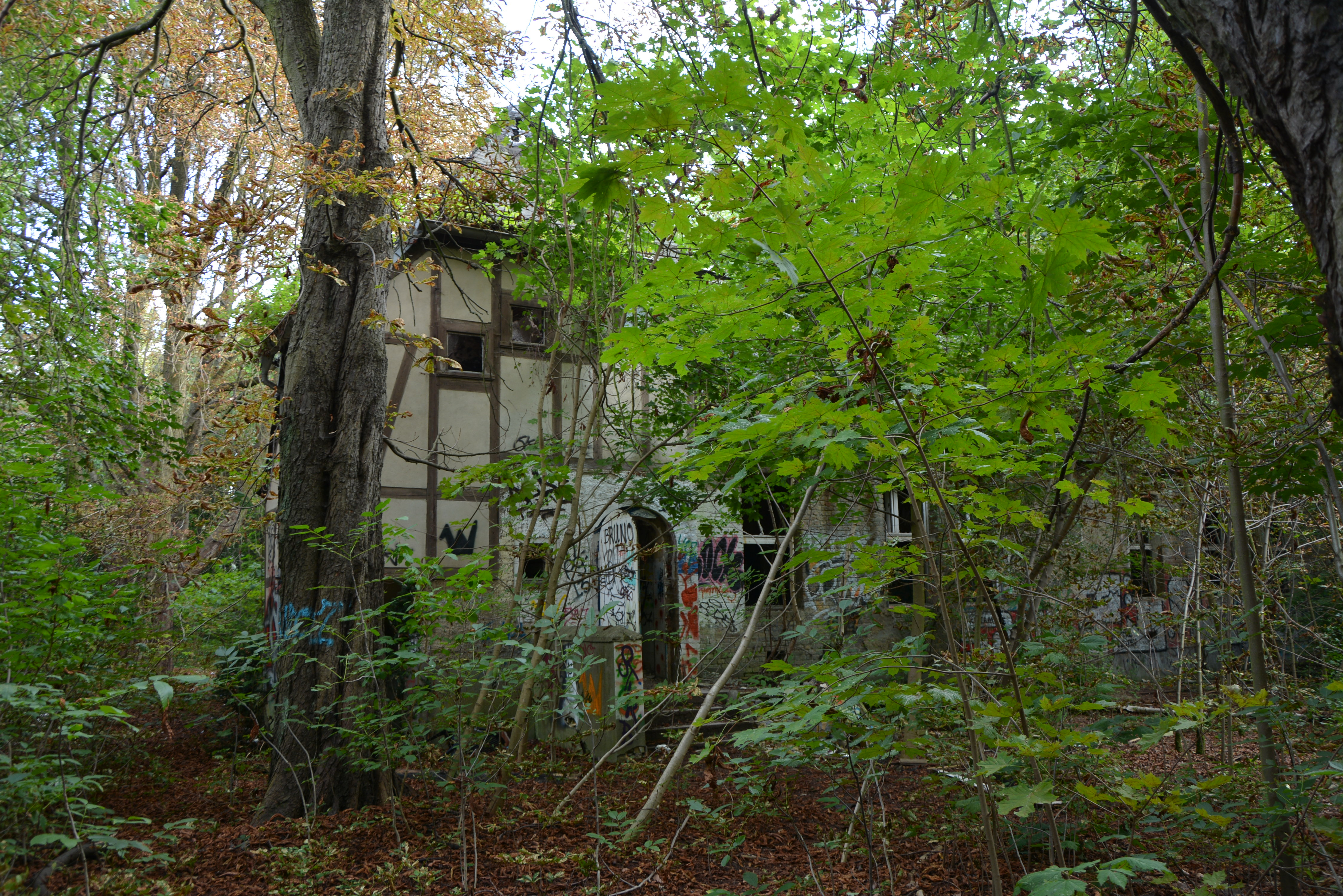 Abandoned Places in Berlin Abandoned Childrens Hospital Woods
